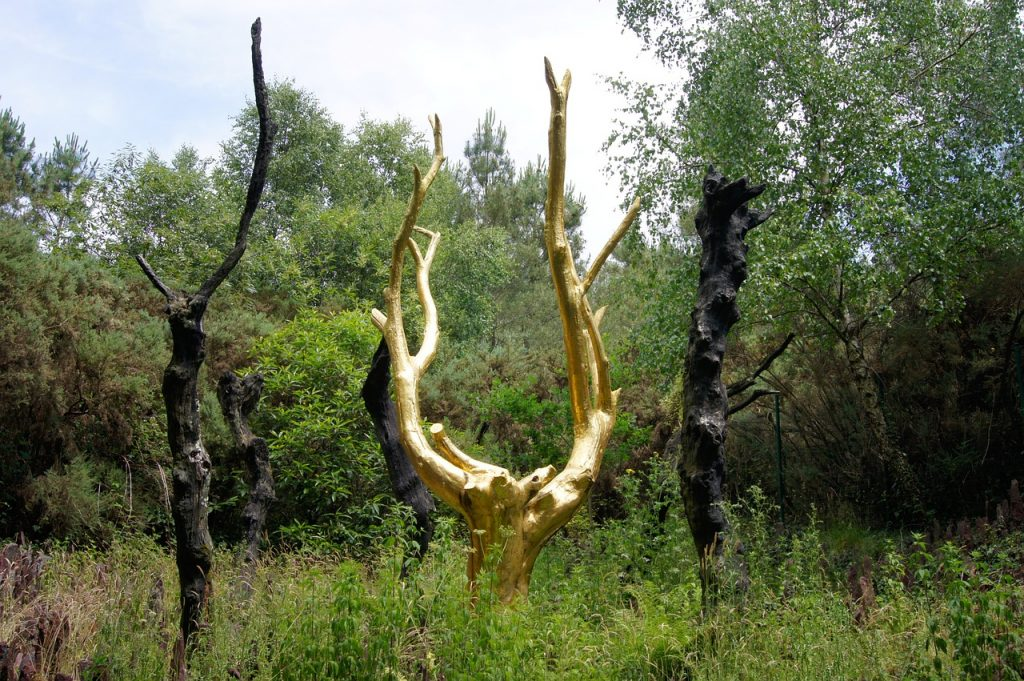 L'arbre d'or situé en forêt de Paimpont.